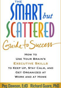 Smart but scattered guide to success